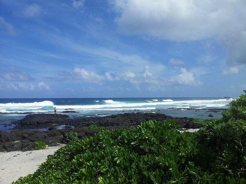 Beautiful shore of Mauritious