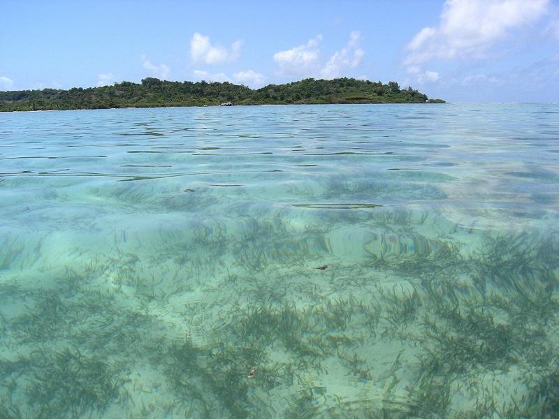Island and ocean photo of Saint Marie Island, Madagascar