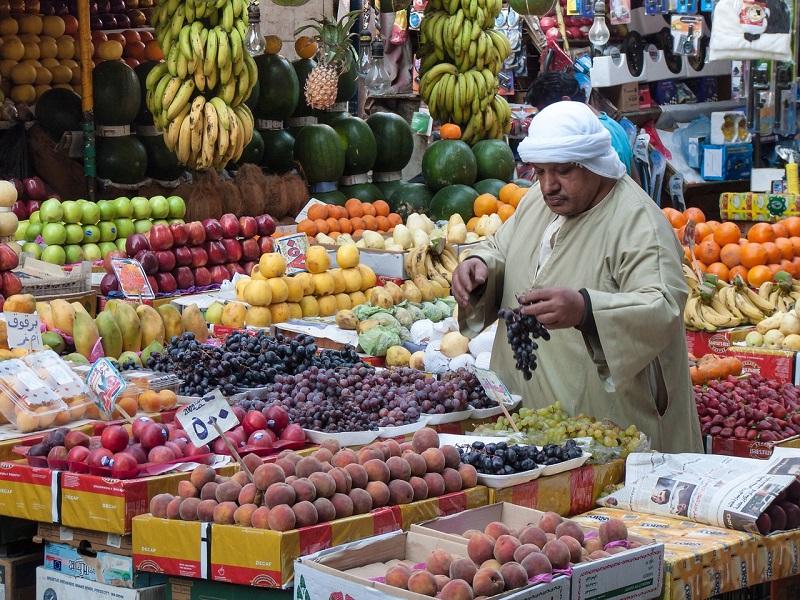 Photo of a fruit market vendor in Cairo