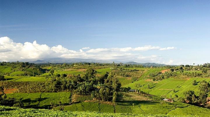 Photo of Kenya landscape