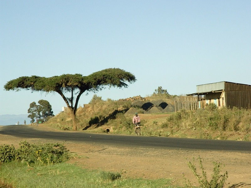 Image of a peaceful road in Kenya