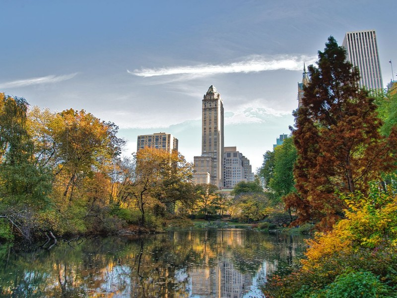Perfect day in Central Park in New York.